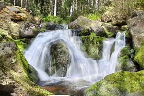 Waterfall Bach Water Landscape Nature Forest