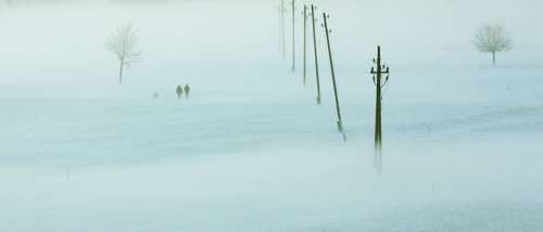 Winter Fog Landscape Ice Dew Snow Wintry
