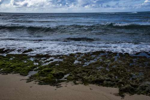 Pacific Ocean On The Shores Of Oahu