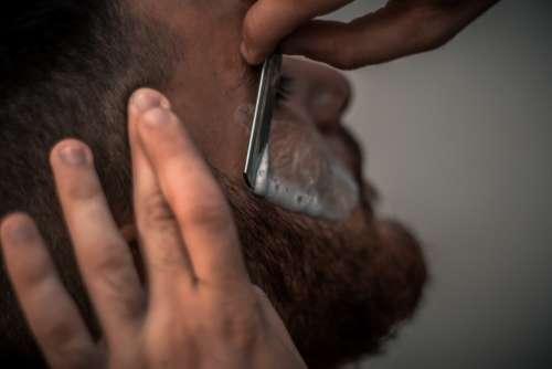 barber razor shave bear man