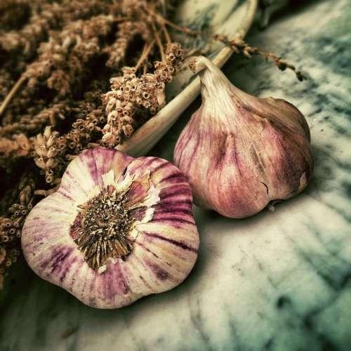 garlic vegetable spices herbs food