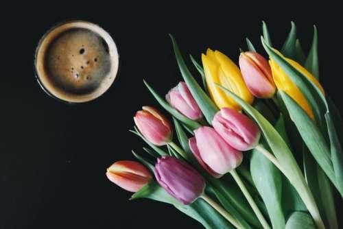 coffee cup flowers leaves plants