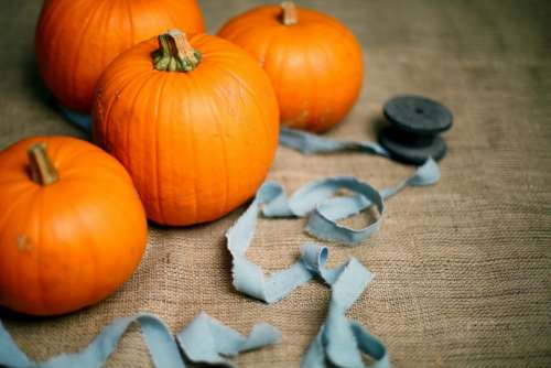 orange winter squash vegetable pumpkin