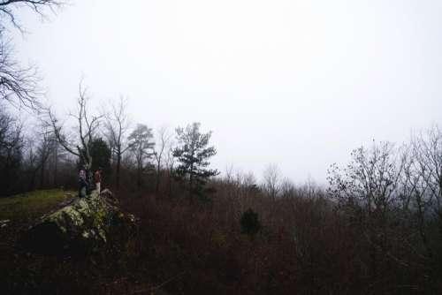 highland mountain hill grass trees