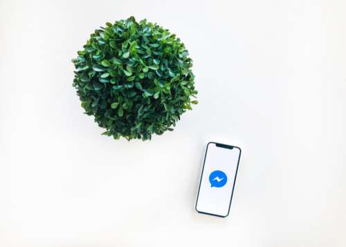 CRM Messenger Facebook iPhone X Plant