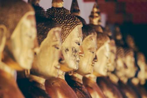 gautama buddha figure statues gold