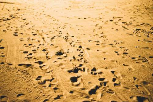 sand beach footsteps footprints shore