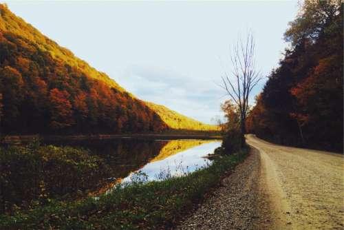 dirt road lake water trees