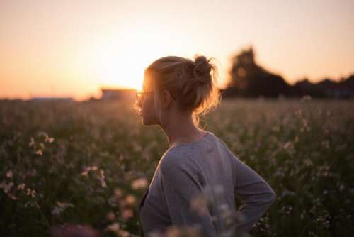 sunlight sunset girl flowers field
