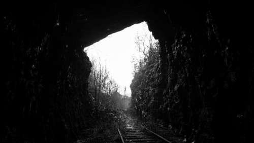 nature landscape train trail rail