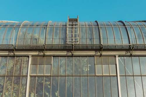 greenhouse plants industrial windows architecture