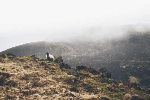 mountain highland cloud fog summit