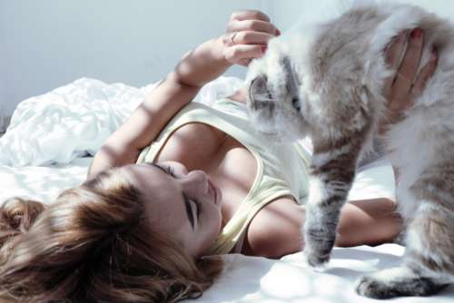 woman bed cat animal kitten