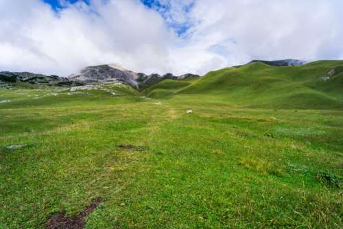 green grass lawn summit highland
