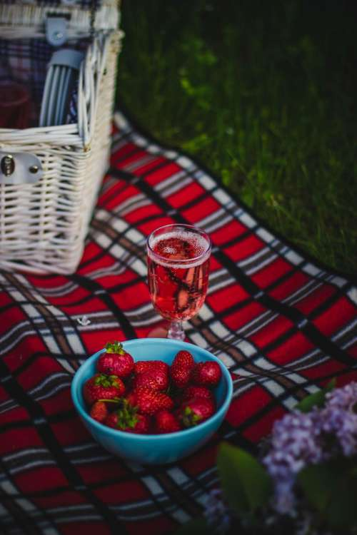cloth picnic outdoor travel food