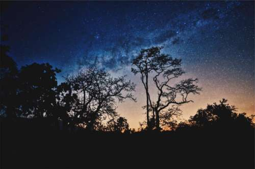 nature landscape trees mountain stars