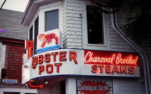 lobster seafood restaurant neon signs