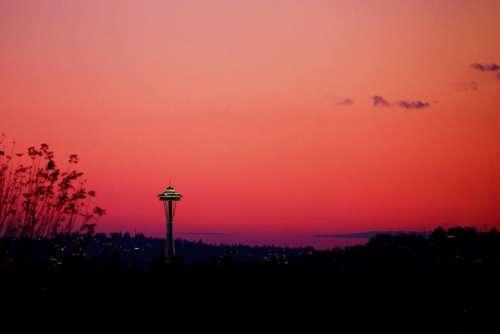 sunset dark pink sky trees