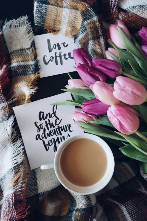 coffee cafe hot mug cup