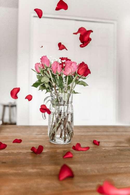love valentine's day valentine valentine's flowers