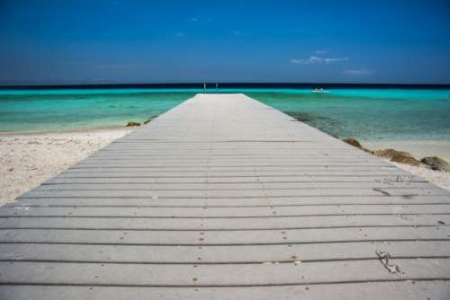wood dock beach sand water