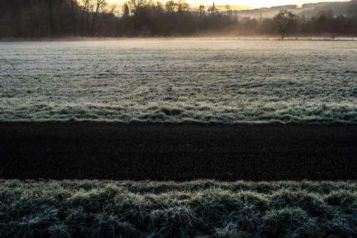 cold winter frozen frost grass