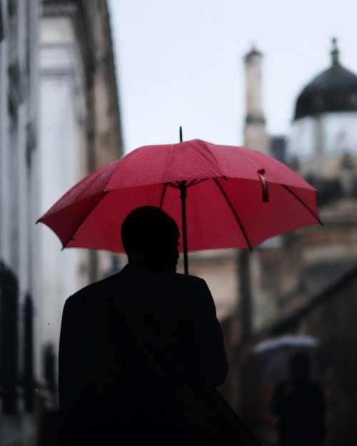 people man guy umbrella rain