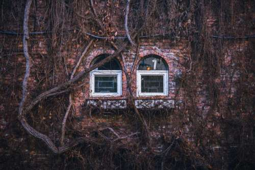 house home residence exterior bricks