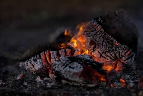 camp fire campfire wood logs