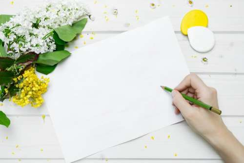 lifestyle work paper pencil flowers