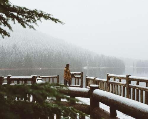 people woman alone lake water