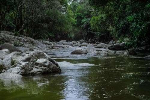 nature water river stream rocks