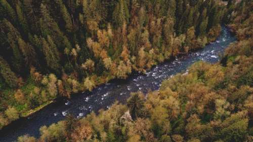 aerial river forest nature outdoors