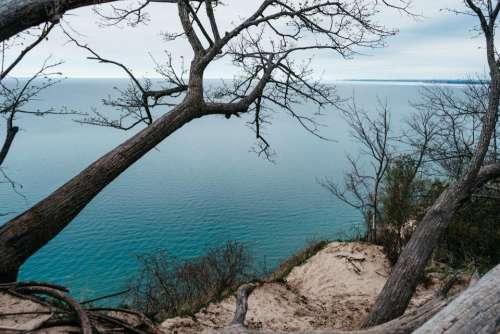 trees coast rocks cliff ocean