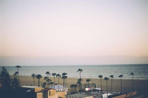 santa monica beach sand palm trees water