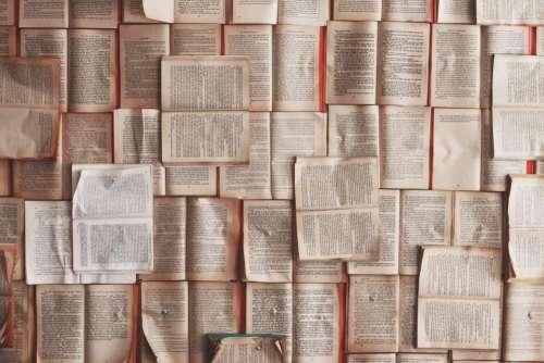 books wall thumbtacks learning education