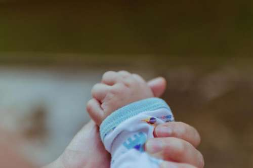 baby hands family people love