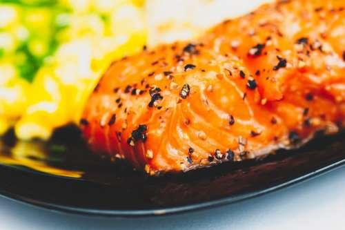 salmon fish food dinner plate