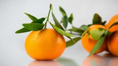 orange fruit table leaves fresh