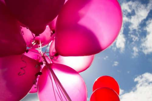 balloon colorful red pink blue