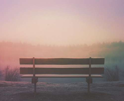 wood bench outdoors fog foggy