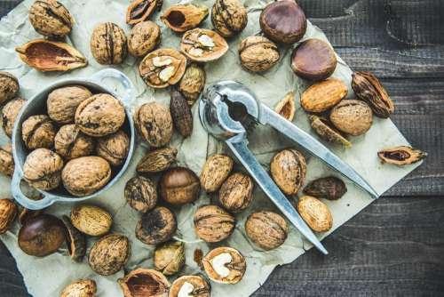seeds nut food table