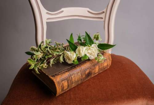 chair flower book scripture