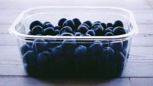 blueberries berries food eating healthy healthy food