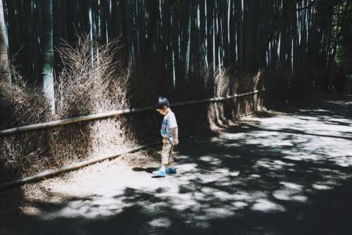 people kid boy child walking