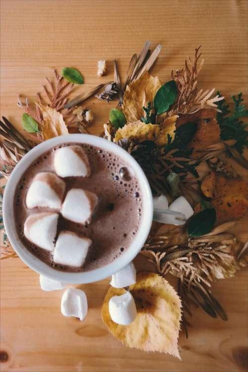 hot chocolate drink marshmallow food