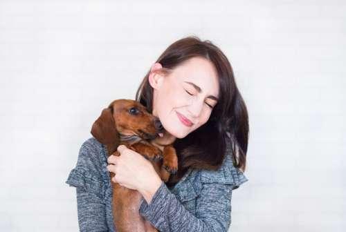dachshund dog woman affection happy