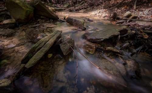 stream water wood rock nature