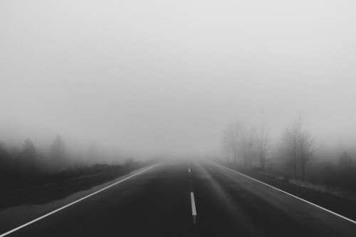 road rural fog trees haze