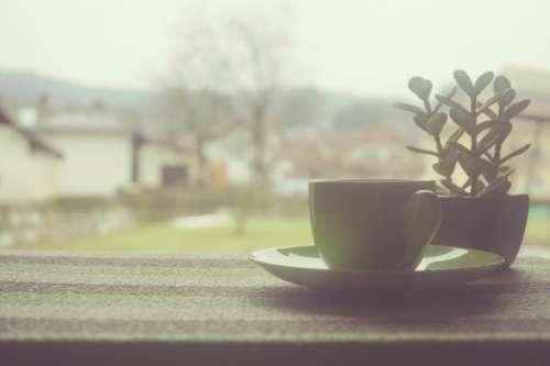coffee cup tea window home